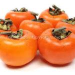 柿渋に新型コロナウィルスを無害化する効果確認