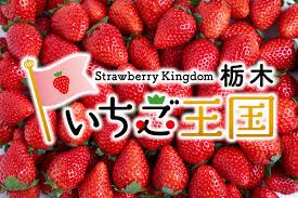 栃木県を「日光県」に変更しよう キャンペーン